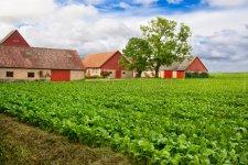 vivid-farmland-18901726.jpg